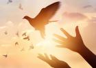 odpustenie, ako odpustiť, hnev, bolesť, láska, sklamanie, zranenie, psychologia, duša, fitastyl.sk, ako sa nehnevať, udobrenie, zmierenie, ako sa posunúť ďalej