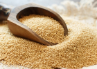 amarant, bez lepku, zrno, obilnina, pseudo, zdravie, strava, výživa, čím nahradiť pšenicu, lepok, mňam, pečenie, raňajky, fit, zdravé