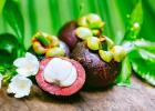 liek, mangostána, ovocie, ovocie bohov, kráľovské, stava, využitie, sladké, chudnutie, výživa, fitštýl, exotické ovocie, exotika, snack