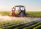 Dopad pesticídov na prírodu je šokujúci. Trpieť budeme všetci!
