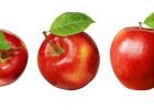 Jablko – ovocie z Rajskej záhrady