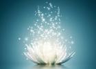 Šťastní vďaka meditácii: priama cesta ku šťastiu