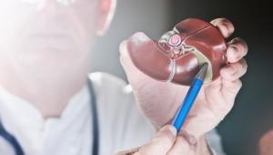 Žlčníkové kamene: ako prebieha diagnostika a liečba?