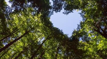 eko, bio, zdravie, životný štýl, planéta, prostredie, životné, fit, zodpovednosť, príroda, slovensko, zem, zvieratá