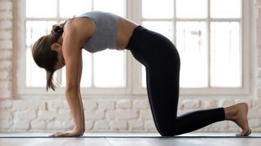 Cvičenie na chrbticu
