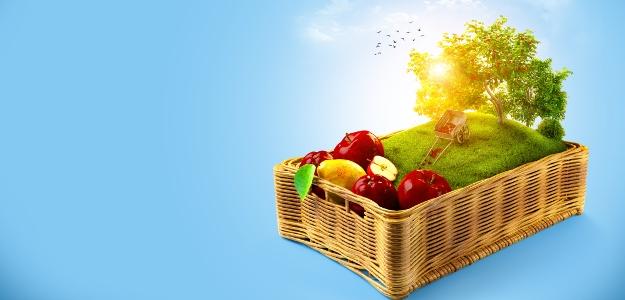 Spoznajte jablkovú históriu a týmto produkciám sa v obchode vyhnite!