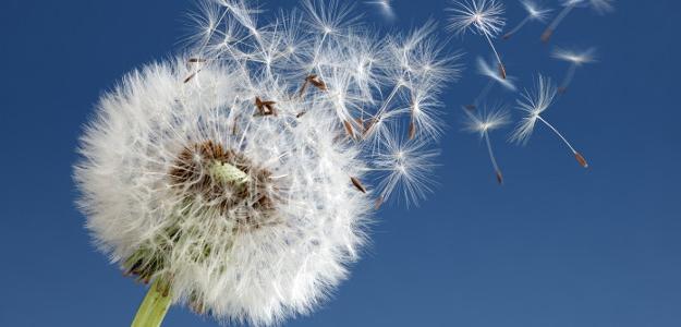 Keď športovanie znepríjemňuje alergia. Je vhodné popri alergii športovať?
