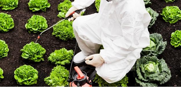 Aké nebezpečenstvo predstavujú pesticídy? Mnohí ľudia sa vystavujú pesticídom sami!