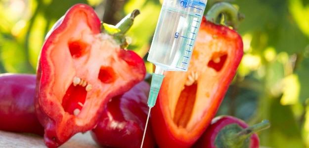 Šokujúce! Zdravotné riziká spojené s konzumáciou potravín s GMO.