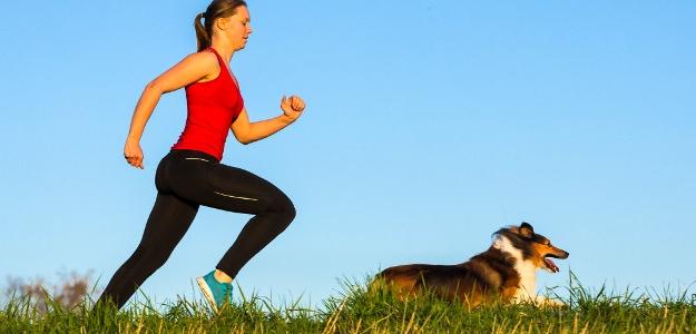 Beh so psom – canicross alebo dogtrekking. Je to zábava!