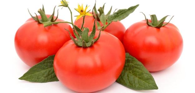 PARADAJKY. Záleží na odrode, spôsobe pestovania a zaobchádzania so zrelými plodmi.