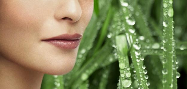 Jarná detoxikácia. Užite si jar na maximum a bez zbytočnej únavy!