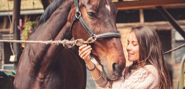 Kone ako liečitelia