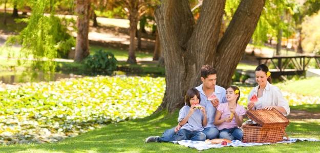Hurá na piknik! V záhrade alebo mimo domu?