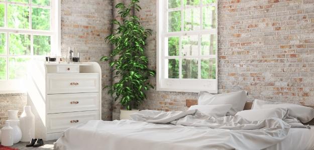 Je vhodné mať rastliny v spálni a detskej izbe?