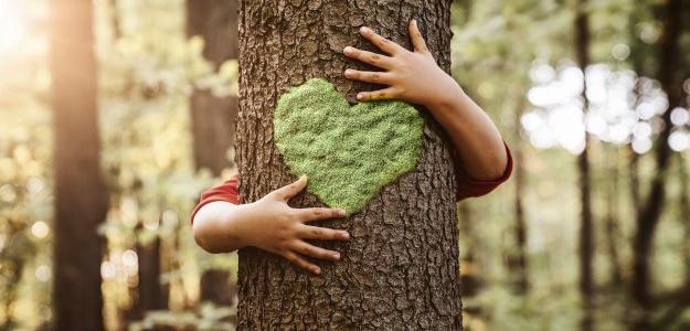 Ako sa prepnúť do eko módu a žiť zelenšie